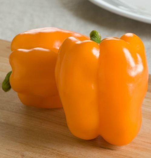 Перец сладкий Оранжевый бык