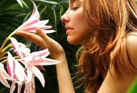 Аромат цветов во дворе дома